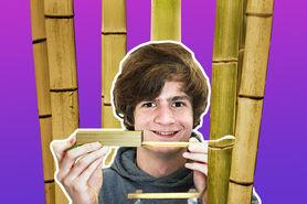 Herstellung mehrschichtiger hochverdichteter Faserverbundwerkstoffe aus Bambus und Fichte