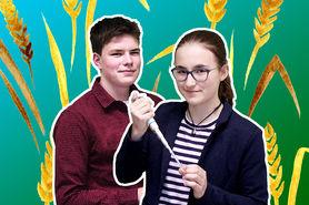 Wechselkandidaten des Weizens – eine Antwort auf den Klimawandel?