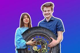 Ökologischer Einfluss von Reifenabrieb auf Straßenrandpflanzen